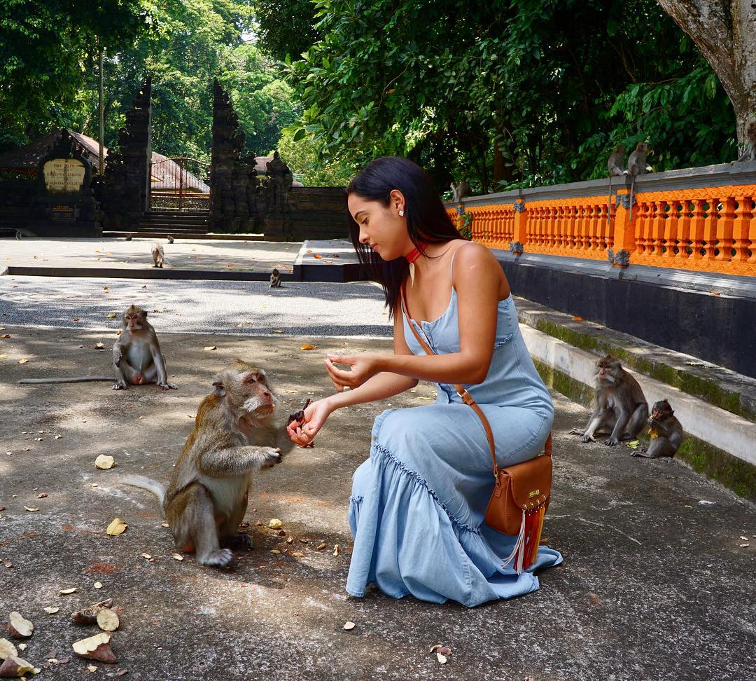 Monkey Forest Alas Kedaton Kediri Tabanan