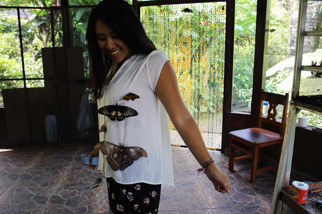 Taman Kupu Kupu Tabanan Bali