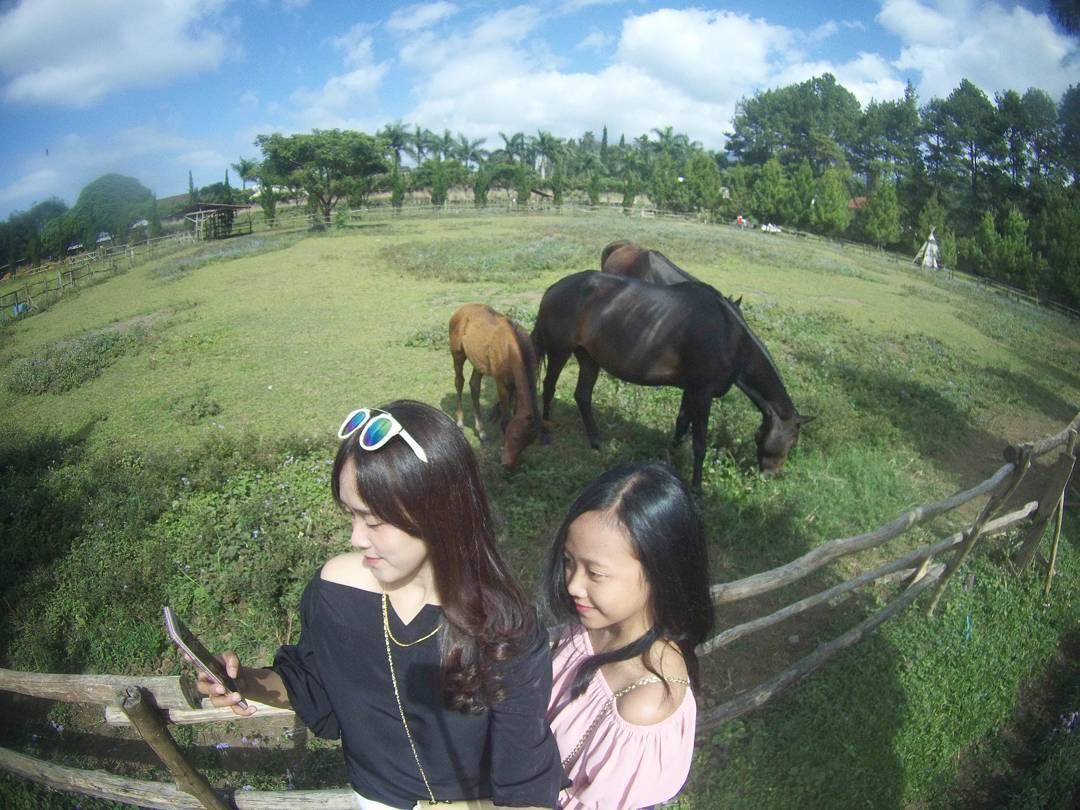 Tempat Wisata di Bandung Yang Murah Meriah Harga Mahasiswa, Pas Banget sob!